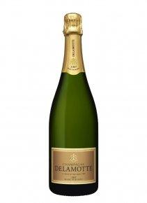 Delamotte Blanc de Blancs 2008 2008 Bouteille 75CL Nu